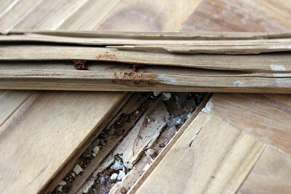 Piso de madeira de uma obra que utiliza o retrofit para reformar o imóvel, onde a TECPRAG atua dando suporte completo a obra.